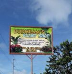 Budhram's Plant Shop and Landscaping Services
